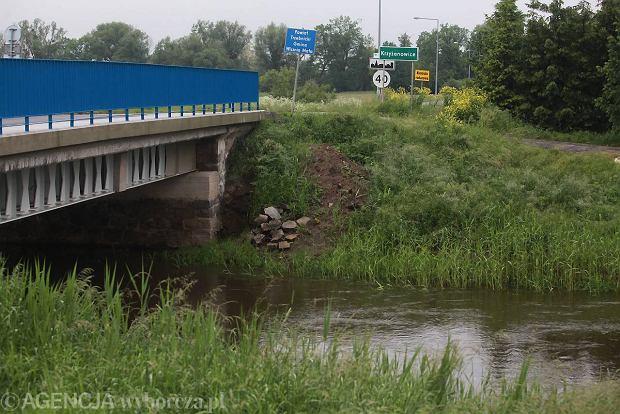 Rzeka Widawa ko�o Krzy�anowic