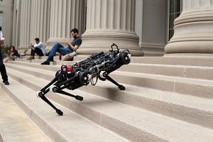 Robot Cheetah 3 od MIT biega, skacze i wchodzi po schodach. Robi to wszystko na ślepo. Jestem przerażony