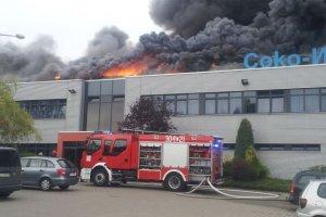 Ogromny pożar na Dąbrowie. Spłonęła hala fabryczna [AKTUALIZACJA]