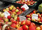 """Rosja straszy eksporter�w jab�ek, """"systematycznie �ami� przepisy"""""""