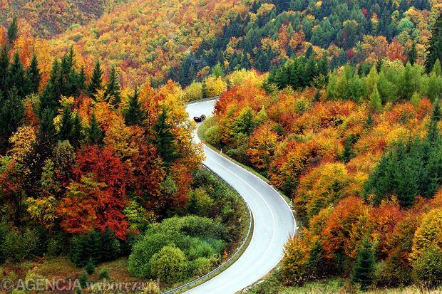 8 pomys��w na jesienne wycieczki [POLSKA I EUROPA]