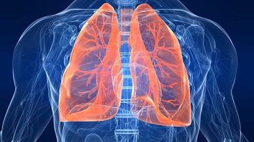 Obecność powietrza (lub innych gazów) w jamie opłucnej to konsekwencja uszkodzenia miąższu płucnego lub przedziurawienia ściany klatki piersiowej