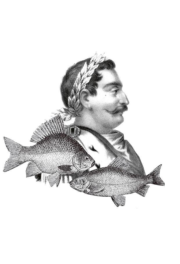 Menu niektórych uczt Jana III Sobieskiego składało się prawie z samych ryb
