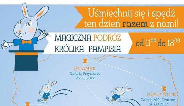 Królik Pampiś rusza w Polskę uczyć dzieci dbania o zęby