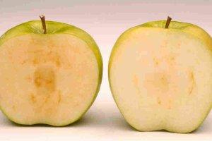 Genetycznie zmodyfikowane jabłka, które nie brązowieją po stłuczeniu. McDonald's ich nie chce