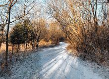 Nadciąga zima? Pierwszy mróz i śnieg w Polsce już w przyszłym tygodniu