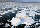 Rosja chce rozszerzy� swoje granice w Arktyce