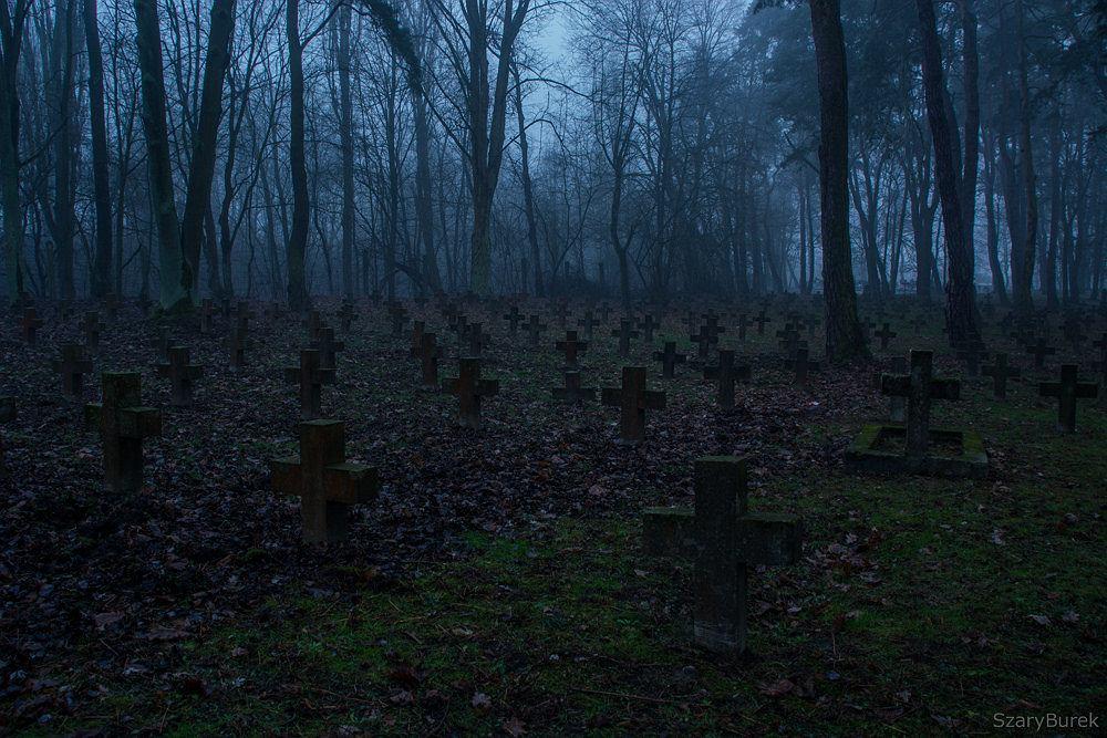 Cmentarz garnizonowy w Twierdzy Modlin