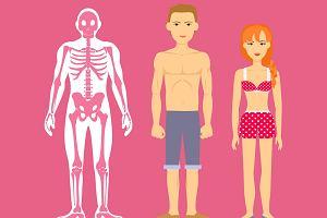 Mezomorfik - sylwetka idealna? Jaką dietę i treningi powinien stosować mezomorfik?