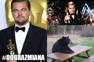 Zdaj�ce si� nie mie� ko�ca oczekiwanie Leonardo DiCaprio na Oscara, przez lata by�o wdzi�cznym tematem internetowych �art�w. w 2016 wreszcie nadszed� TEN moment. Koniec mem�w? Nie, pocz�tek nowych! Zobaczcie te najlepsze.