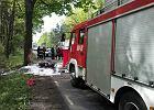 Motocyklista uderzył w drzewo, zginął na miejscu