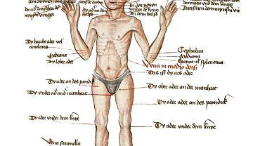 'Górnoniemiecka książeczka o upuszczaniu krwi' powstała między 1477 a 1496 r. Na 122 stronach autor umieścił 38 ilustracji pokazujących miejsca, w których można otwierać żyły, i choroby, które te zabiegi mają wyleczyć. Niedługo później francuski lekarz Pierre Brissot (1478-1522) zakwestionował metodę otwierania żył z dala od ogniska choroby. Jego zdaniem należało nakłuwać żyły blisko chorego miejsca. Przeciwnicy Brissota zarzucili mu kacerstwo, musiał opuścić Paryż i schronić się w Portugalii. Po śmierci jego idea zaczęła jednak dominować.