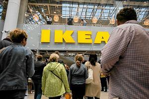 IKEA mocno stawia na ekologię. Plastikowych jednorazówek już nie uświadczysz