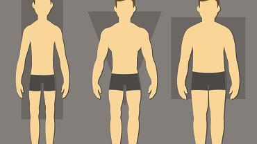 Somatotyp to inaczej typ budowy ciała. Rozróżnia się trzy główne somatotypy: ektomorfik, mezomorfik oraz endomorfik