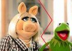Miss Piggy i �aba Kermit rozstali si�: Podj�li�my decyzj� o zako�czeniu naszego romantycznego zwi�zku