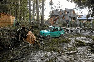 Szlaki w Tatrach zamkni�te przez halny. Wichura powali�a setki drzew