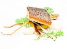 Filet dzikiego łososia wiślanego z polentą, cebulą dymką, korzeniem pietruszki i musztardowcem - ugotuj