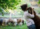 Przeprowadziła się do Portugalii. I założyła hodowlę alpak