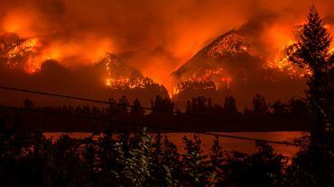 Pożar lasu w kanionie rzeki Columbia