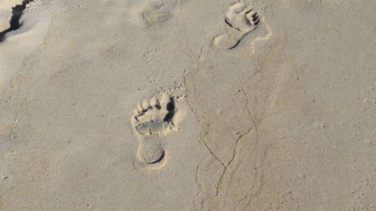Dziś możliwy wyrok ws. napaści na plaży w Rimini