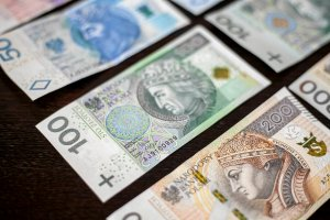 Gdyby walutom urządzić mistrzostwa świata polski złoty byłby w tym roku w finale. A w Europie jest najsilniejszy