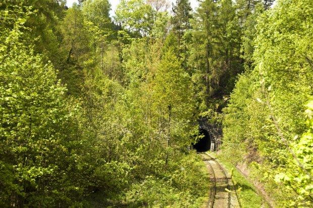 Zdjęcie numer 1 w galerii - Tunele kolejowe w Polsce. Podobnymi mógł jechać