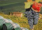 W�ochy. Wino i winnice w Toskanii - rejony winne