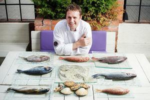 Ryba w kuchni - poradnik