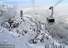 �liska sprawa, czyli czym ryzykuje narciarz nie wykupiwszy OC