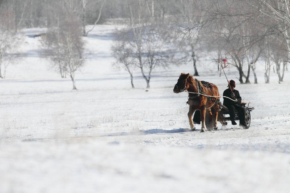 Mongolia zimą / fot. Shutterstock