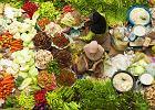 Malezja, kuchnia, warzywa