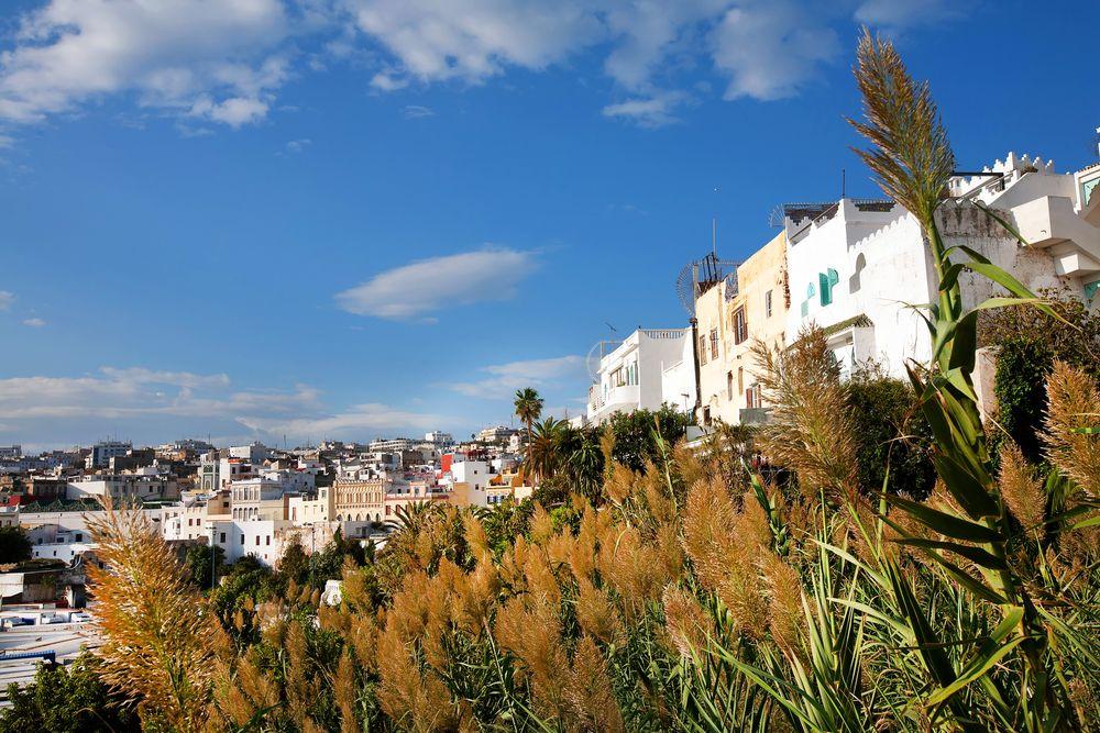 Wycieczka do Afryki. Tanger - Maroko / fot. Shutterstock