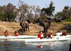 Afryka. Zambezi Adventure - kajakowe safari [EKSKLUZYWNE WYPRAWY]