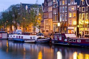 Holendrzy nie lubią imigrantów?