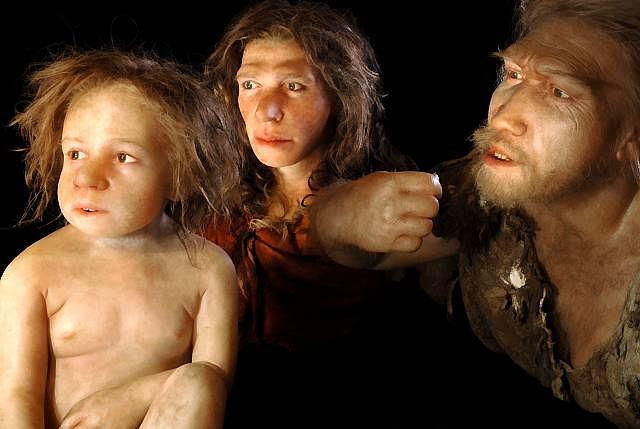 Zdjęcie numer 3 w galerii - Neandertalczycy wymarli, bo nie umieli gotować?