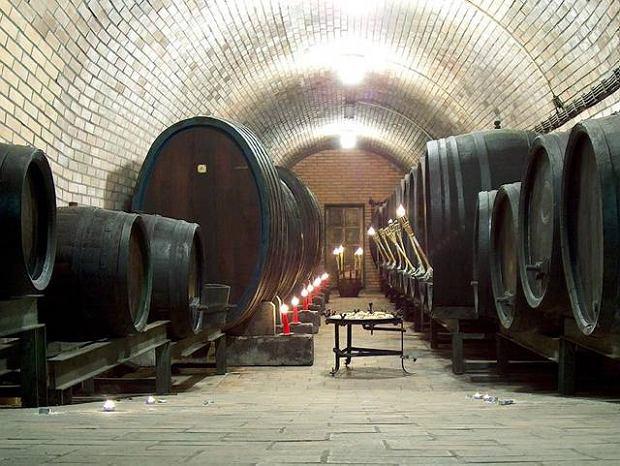 Słowacja. Majowe święto wina