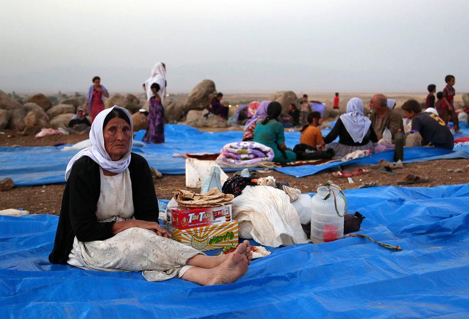 Jezydzcy uchodźcy w obozie w syryjskim Derike, 10 sierpnia 2014 r.