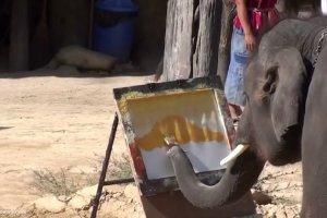 Wiedzieliście, że zwierzęta potrafią malować? I to jak!