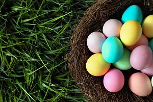 Jajko to samo zdrowie! Co zatem z cholesterolem i salmonellą?