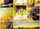 Resweratrol - d�ugowieczno�� z winogron?