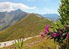 TPN wprowadzi� op�aty za �luby i sesje fotograficzne w Tatrach