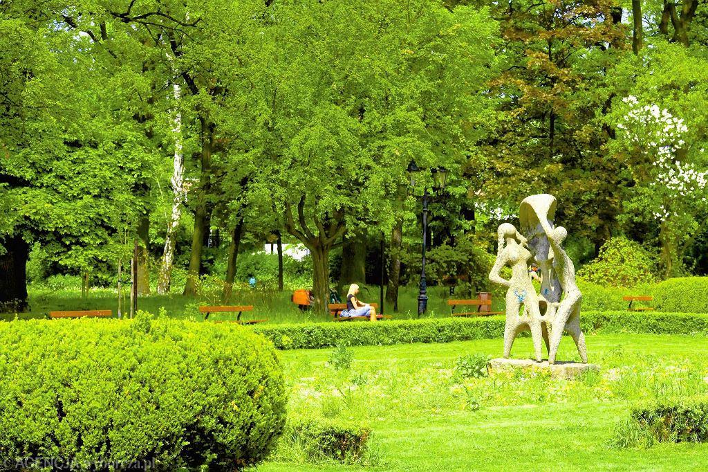 W Parku Źródliska możemy odpocząć, a także rzucić okiem na rzeźby i pomniki natury. / TOMASZ STANCZAK