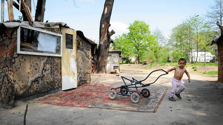 Władze Wrocławia zażądały, aby Romowie w ciągu dwóch tygodni opuścili koczowisko przy ul. Paprotnej