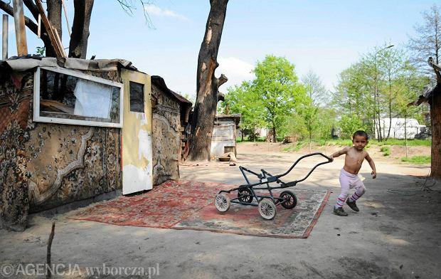 W�adze Wroc�awia za��da�y, aby Romowie w ci�gu dw�ch tygodni opu�cili koczowisko przy ul. Paprotnej