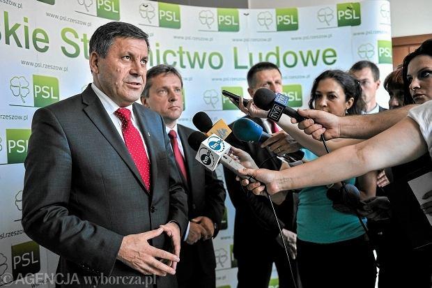 PSL ma kandydat�w do Europarlamentu: Piechoci�ski, Kosiniak-Kamysz, Pawlak