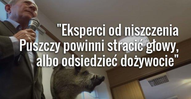 """""""Guardian"""" o """"ostatnim bastionie"""" Puszczy Białowieskiej. I cytuje te wypowiedzi leśników"""