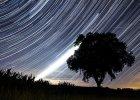 Perseidy 2017 - noc spadających gwiazd już dziś. Wyjdźmy z domów, patrzmy w niebo