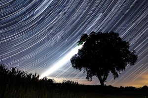 Deszcz perseid�w - to ju� dzi�! Noc z tak du�� ilo�ci� spadaj�cych gwiazd zdarza si� raz na 12 lat.