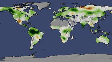 Stworzona przez NASA mapa pokazująca obszary największego przyrostu biomasy na Ziemi