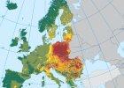Polska oddycha rakotw�rczym benzo(a)pirenem